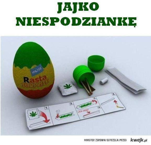 Rasta jajko ;p