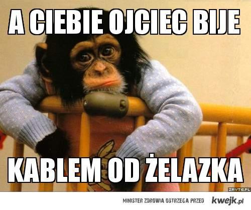 Pocieszna małpka