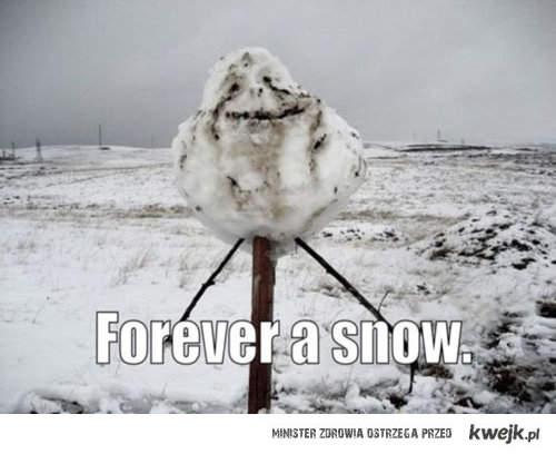 foreverr snow