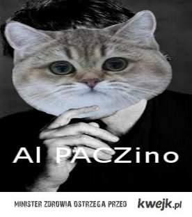 Al PACZino :D