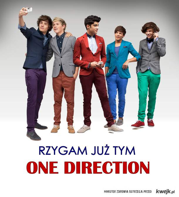 One Direction do porzygu !