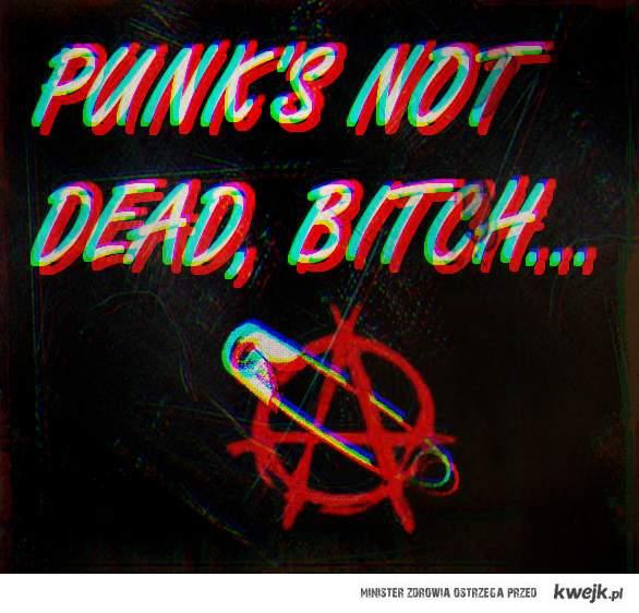 punk's not dead, bitch