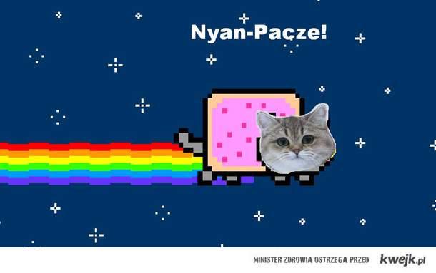 Nyan-pacze!
