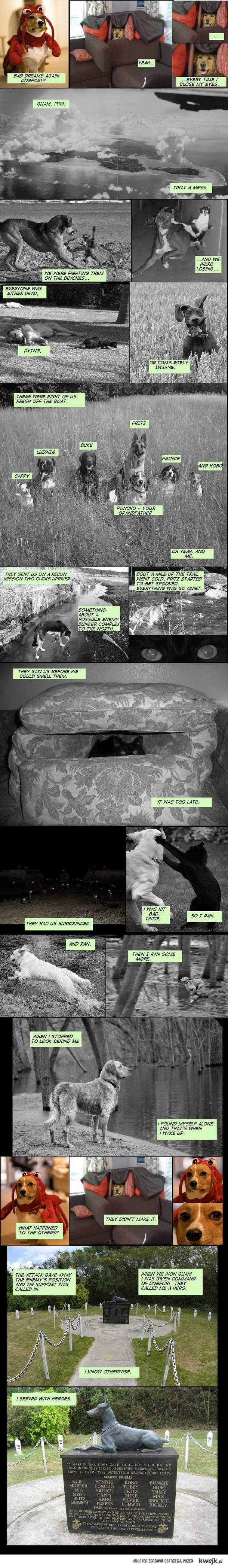 dogs - true story