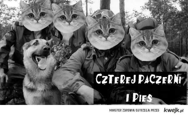 Czterej Paczerni i pies