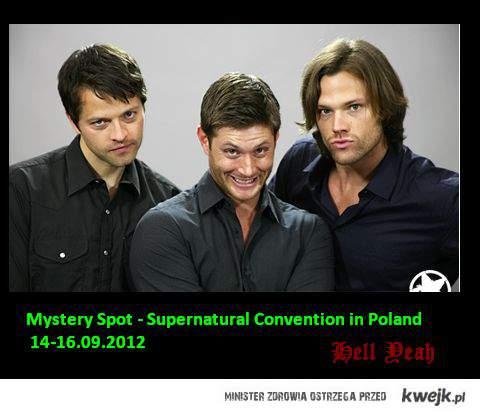 www.mysteryspotcon.pl