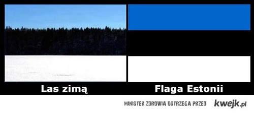 las zimą i estonia