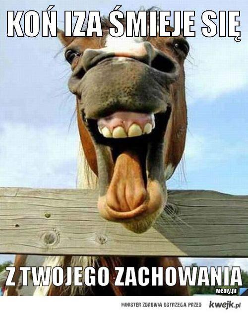 Koń Iza