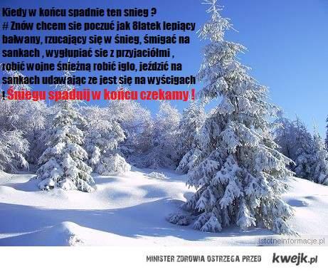 Sniegu napierdalaj !