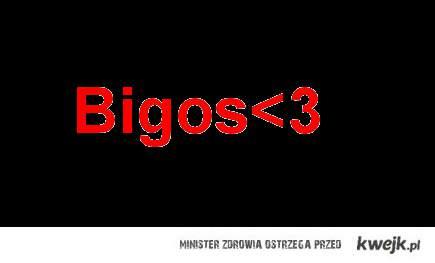 Bigos <3