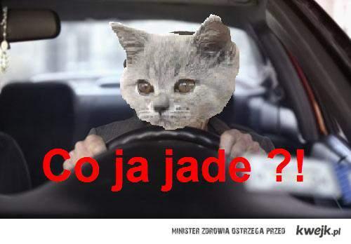 Co ja Jade?