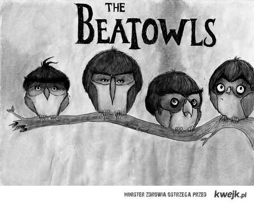 the beatowls