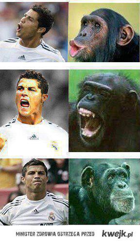 boski Ronaldo