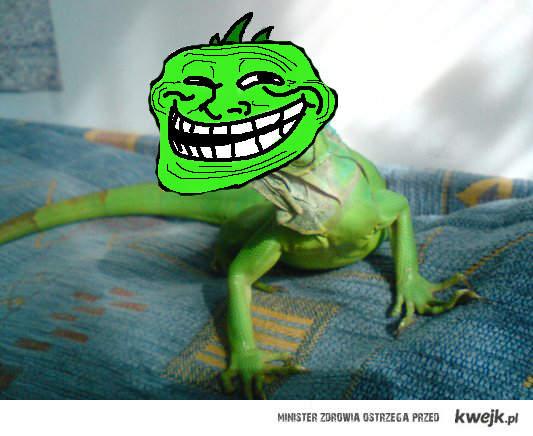 Iguana Troll Face