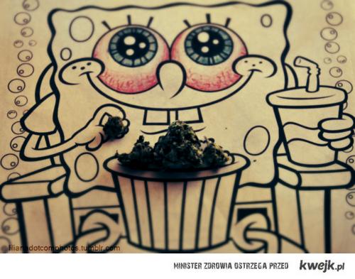 sponge weed