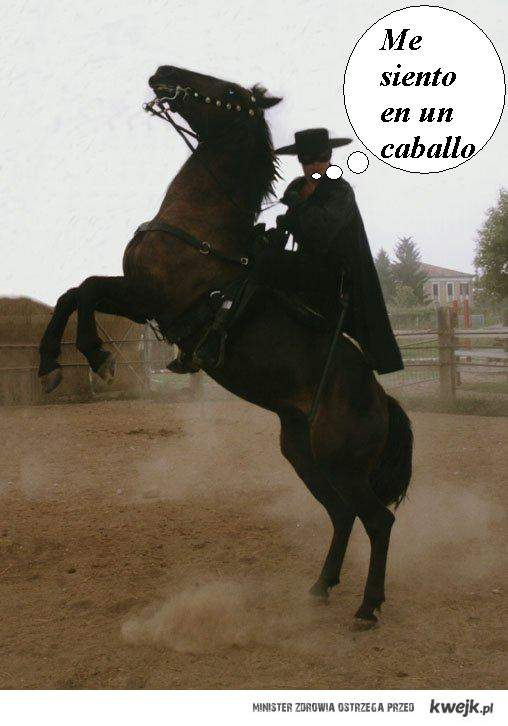 Siedzę na koniu :)