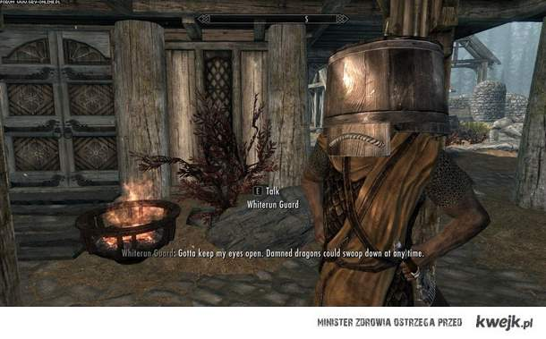 Strażnicy Skyrim