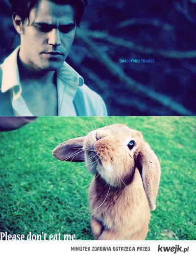 Stefan Salvatore Please don't eat me.. ! :-D