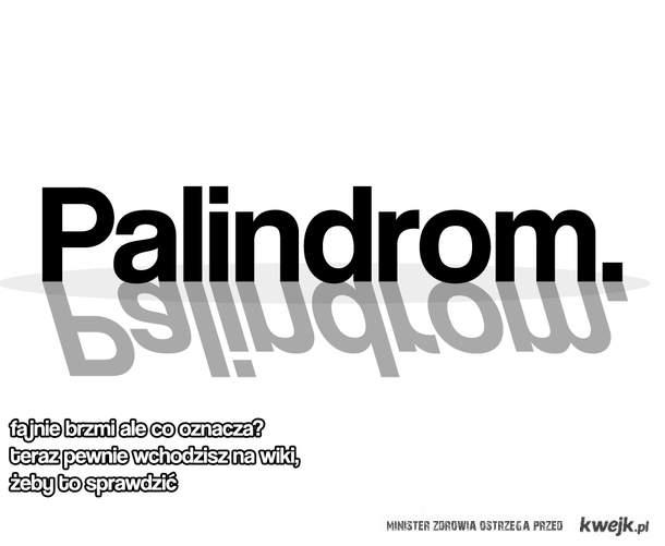 Palindrom.