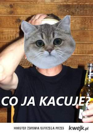 co ja kacuje?