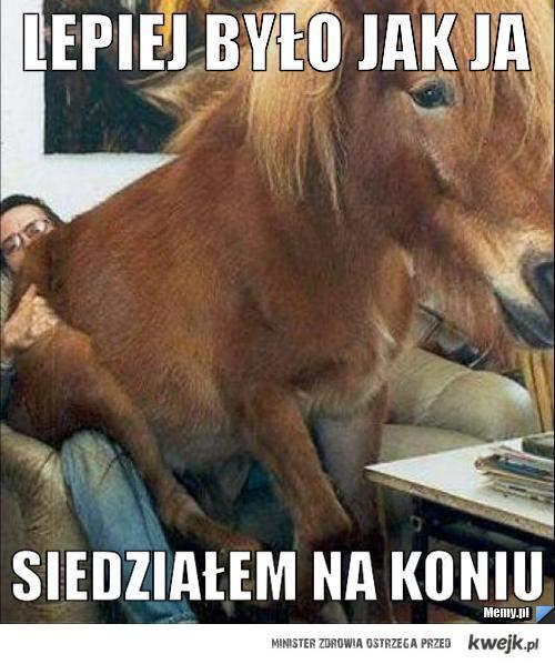 Siedzę na koniu!