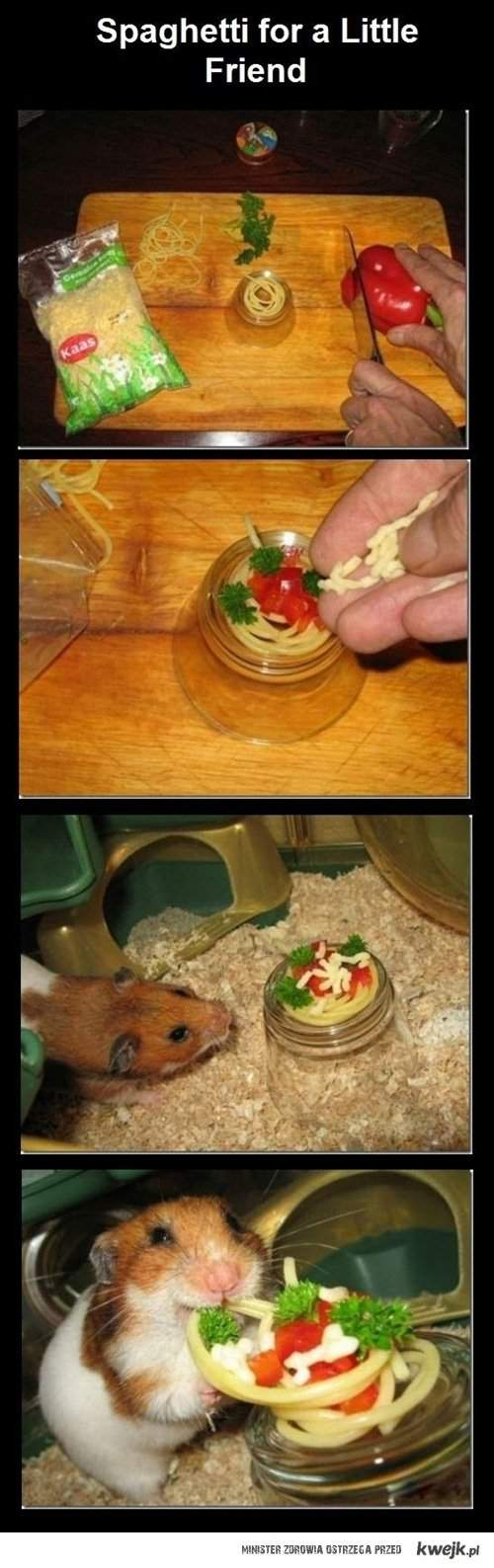 spaghetti for a friend