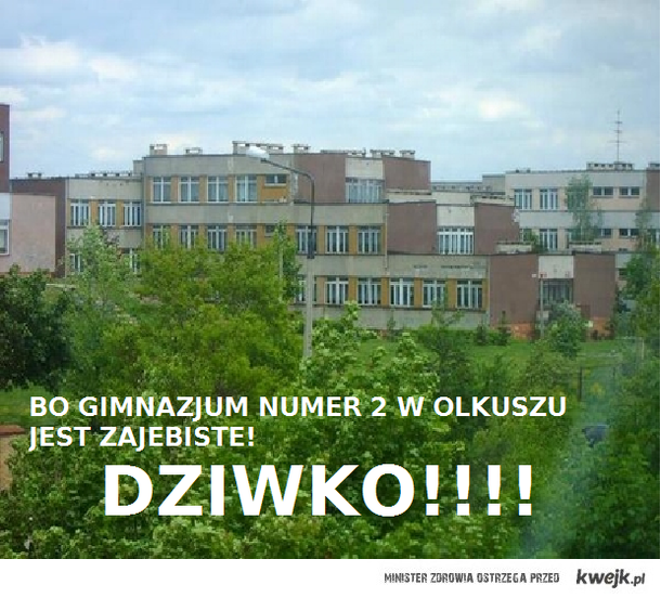GIM 2 OLKUSZ