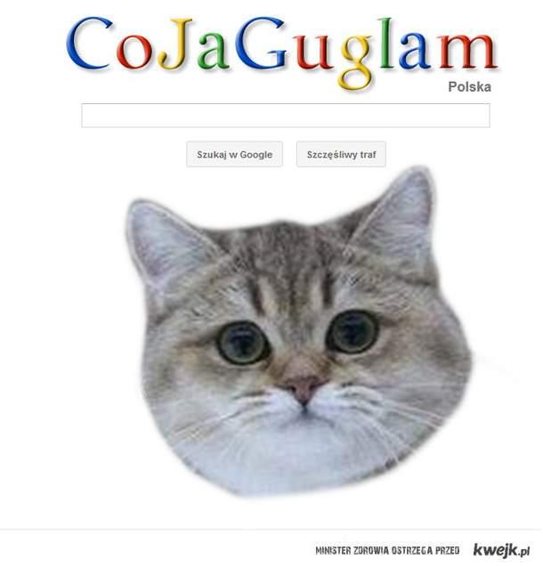 Nowe google