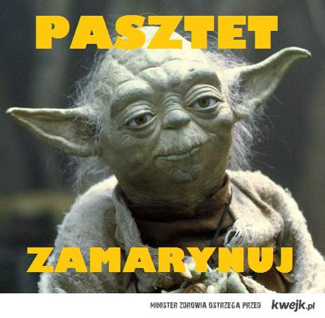 Yoda and pasztet