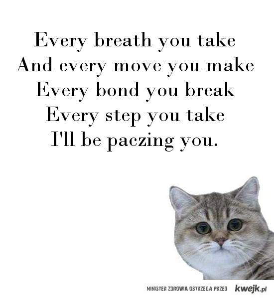 paczing you