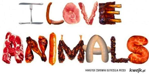 kocham zwierzęta