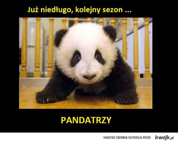 Pandatrzy