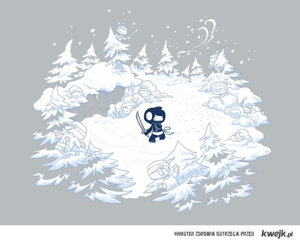 Śnieżni ninja