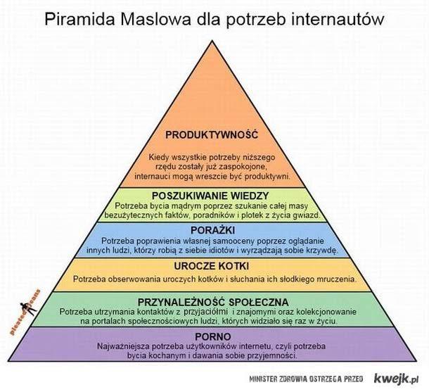 piramida potrzeb internautów