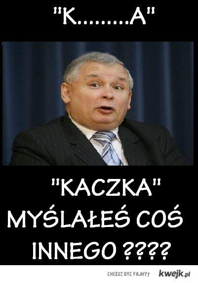 Kaczka po polsku