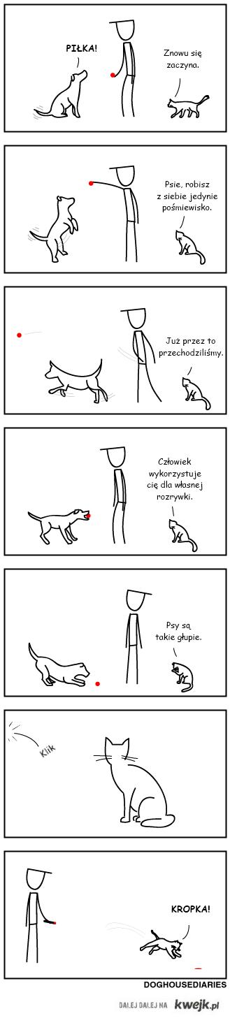 głupie zwierzątka