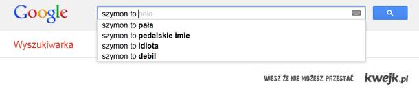 Wyszukiwarka google....