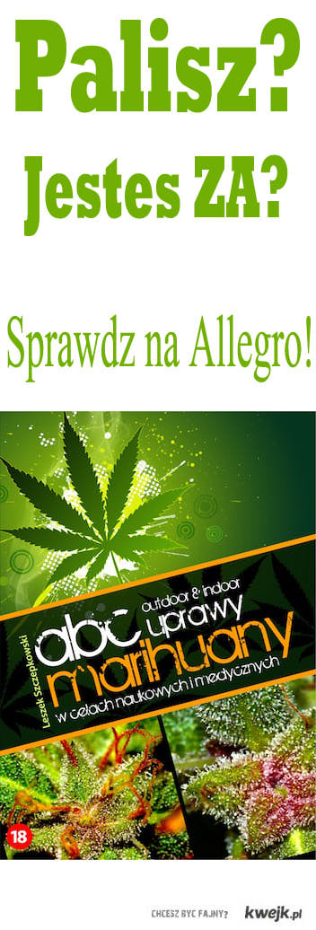 Jesteś za legalizcją?