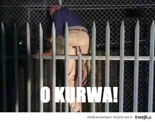 O KURWA