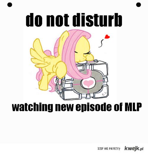 Nie przeszkadzać oglądam nowy odcinek my little pony friendship is magic