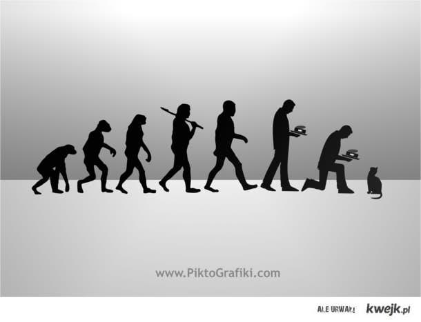 ewokotolucja