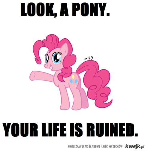 pony...