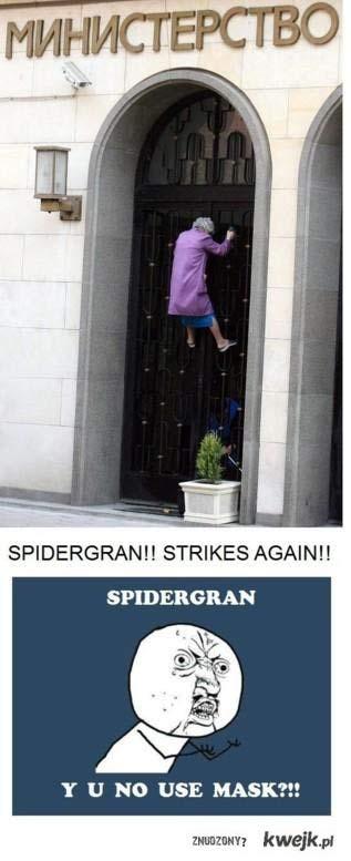 SpiderBabcia