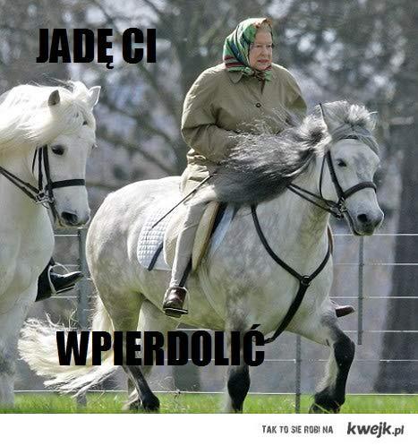 królowa na koniu
