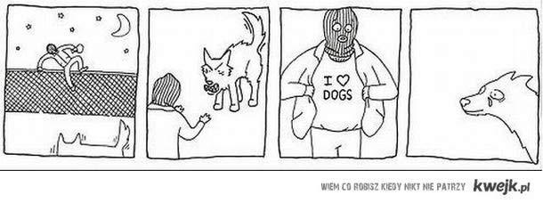 kocham psy