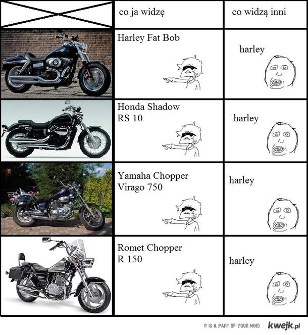 HARLEY!