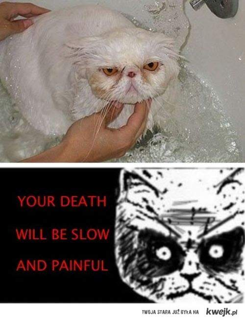 you'll die