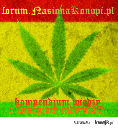 forum.nasionakonopi.pl