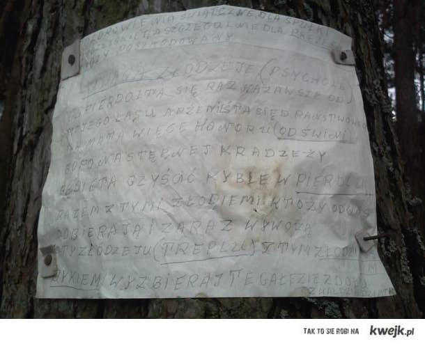 Komunikat leśny