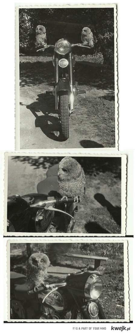 Motor mojego dziadka
